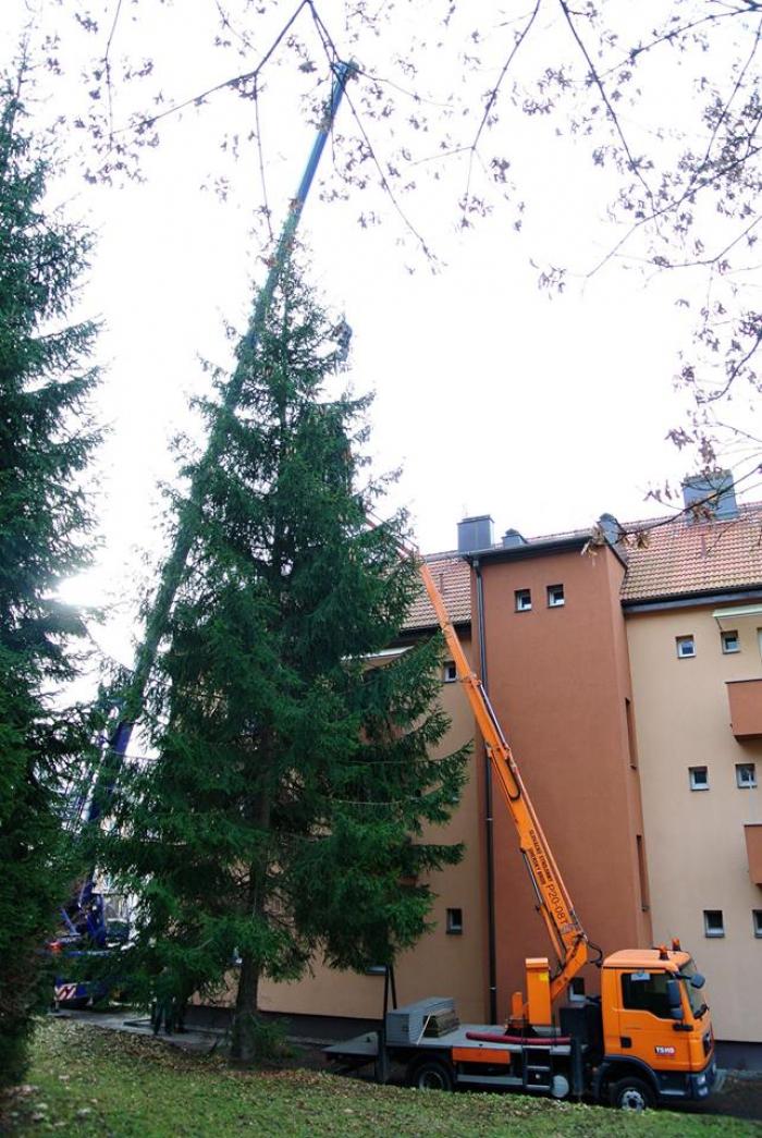 kerstboom, marktje en kinderkoor uit Tsjechie in Brielle